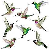 Stickers4 Vogel-Fensteraufkleber zum Schutz gegen Vogelschlag - Acht Groß schöne Kolibri-Glasaufkleber, doppelseitig und selbstklebend zum Schutz gegen Vogelkollisionen