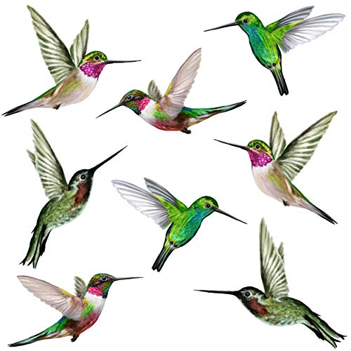 8 grote mooie Humming Bird Static Cling raamstickers - Hummingbird Anti Collision Bird Strike raamstickers - UNIEKE dubbelzijdige print