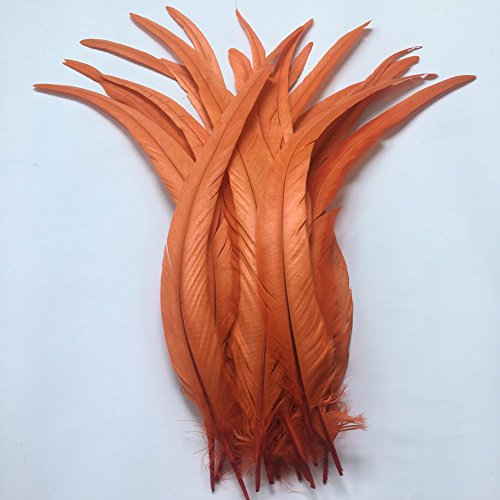 Sowder schwarze Schwanzfedern vom Hahn, ca. 27–35cm Länge, 50Stück Orange