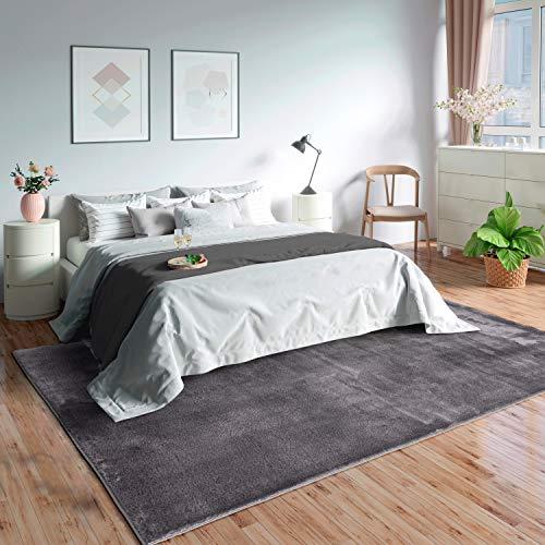 Mia's Teppiche Olivia Alfombra de salón de Pelo Corto Suave (19 mm), Antideslizante, Poliéster, Antracita, 160 x 230 cm