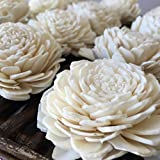 Eco Flower Sola Wood Flowers - One Dozen Wholesale