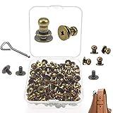 Nother XianzhanEU 100 remaches de cuero, aleación de aluminio, remaches ornamentales para productos de cuero como cinturones, bolsos de cuero, con 100 tornillos + destornillador + caja (bronce)