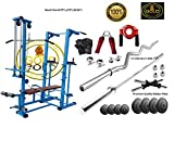 GOLD FITNESS ABS Tower with Push up DIPS and Workout with 20 in 1...