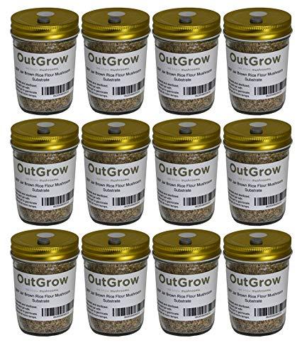 BRF Jars Brown Rice Flour Mushroom Substrate (12 Pack)
