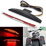 KATUR Motocicleta Guardabarros Trasero Tip 22 Rojo LED Freno