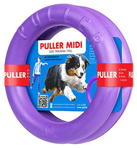 COLLAR Professional Dog Training Equipment and Bonus - Giant Medium K9 Large Dog Training Tool - Dog Supplies - Real Physical and Emotional Load Your Dog (Two Rings for S - M Size Dogs)