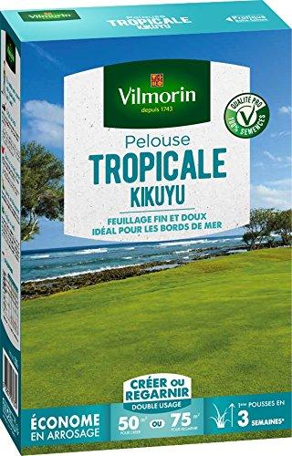 Vilmorin 4344512 Pelouse Tropicale Kikuyu, Vert, 500 g