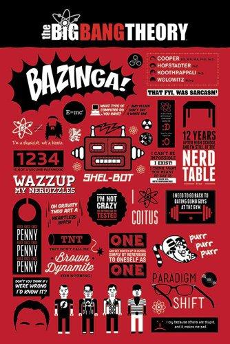 The Big Bang Theory - Infographic - FilmMaxi-Poster, Druck, Poster Kino Movie TV-Serie Kindersendungen - Grösse 61x91,5 cm + 1 Ü-Poster der Grösse 61x91,5cm