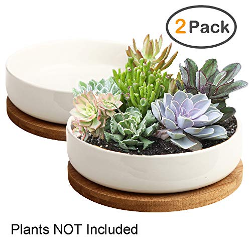 ZOUTOG Succulent Pots, 6 inch White Ceramic Flower Planter Pot with Bamboo Tray, Pack of 2 - Plants Not Included