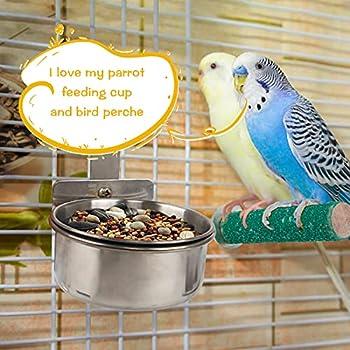 Chudian 2pcs Bol d'alimentation De Perroquet+2pcs Oiseaux Perches, Mangeoires pour Perroquets en Acier Inoxydable Mangeoire Cage Oiseaux Perchoir Perroquet Support en Bois pour Cage à Oiseaux