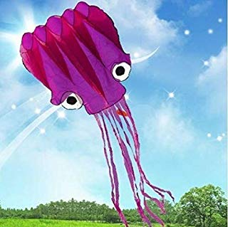 5M Large Octopus Parafoil Kite with Handle & String by Amazona's presentz
