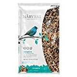 Bird Food Supplies