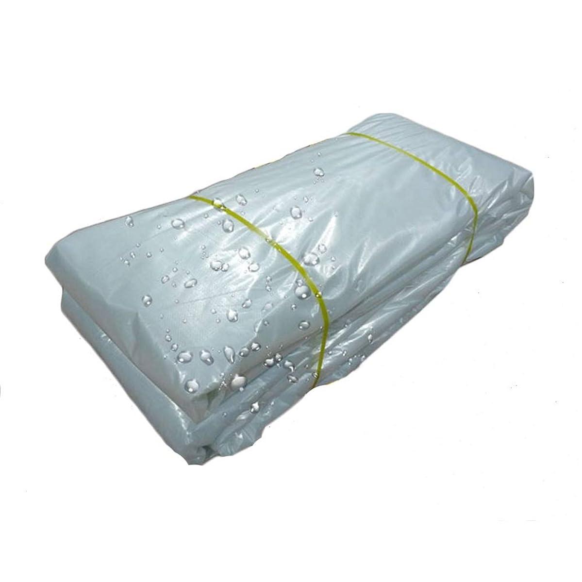 ロードハウス裕福な移行するHPLL 多目的防水シート 透明なPEターポリン、キャノピー厚く雨布日焼け止めパンチシェード屋外ターポリン温室花植栽絶縁フィルム 防水シートのプラスチック布,防雨布 (Size : 4m×6m)