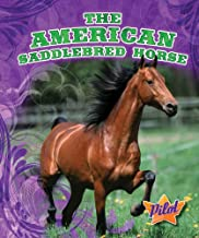 The American Saddlebred Horse (Pilot Books: Horse Breed Roundup)