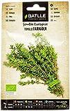 Semillas Ecológicas Aromáticas - Tomillo - ECO - Batlle