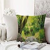 Kissenhülle Super Weich Home Decoration,Forest, Stream Cascade im Tropenwald zwischen Bäumen...