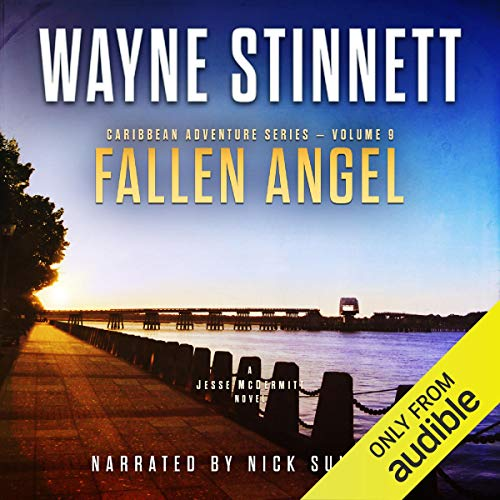 Fallen Angel: A Jesse McDermitt Novel Audiobook By Wayne Stinnett cover art