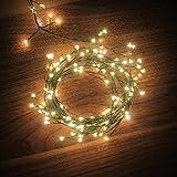 led starry lights, dailyart battery operated waterproof dark green copper wire fairy light string