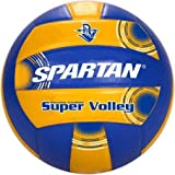 Official Avp Volleyball