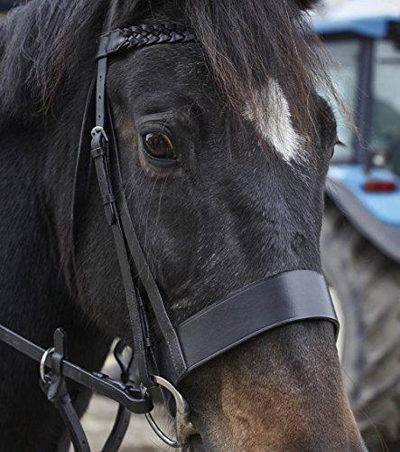 equipride trenzada de equitación 2'de ancho cabezada con riendas tamaño completo, negro