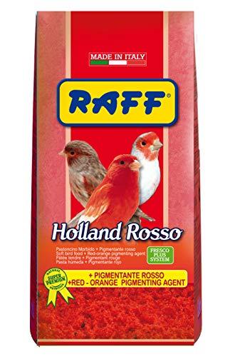 Holland Rosso 1 kg - con PIGMENTANTE Rosso PASTONCINO Morbido