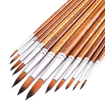 Artist Watercolor Brushes, Round Pointed Tip Paint Brushes Set, 12pcs Different Sizes Detail Paint Brush for Watercolor, Acrylics, Ink, Gouache, Oil, Tempera