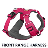 RUFFWEAR - Front Range Dog Harness, Reflective and Padded Harness for Training and Everyday, Wild Berry (2017), Medium