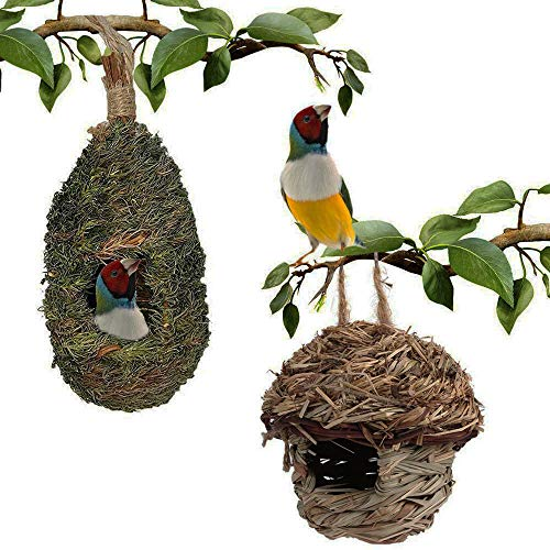 PINVNBY Hummingbird House Grass Hand Woven Bird Hut Nest Natural Outside Hanging Birdhouse for Finch & Canary Resting Pack of 2