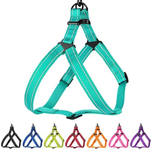 CollarDirect Reflective Dog Harness Step in Small Medium Large for Outdoor Walking, Comfort Adjustable Harnesses for Dogs Puppy Pink Black Red Purple Mint Green Orange Blue (Small, Mint Green)