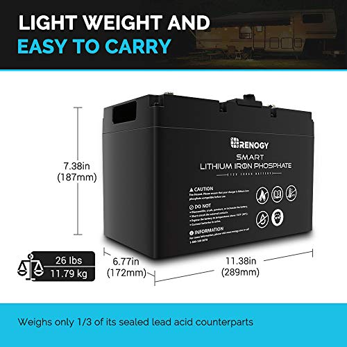Renogy Li 12V 100Ah Smart Lithium Iron Phosphate Battery