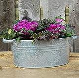 Bluebell Yard Jardinière classique en zinc