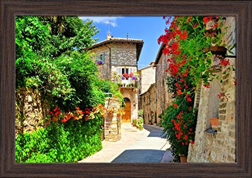 Flower Filled Medieval Street in the Beautiful Old Town of Assisi, Italy 9017787 (18x12 Giclee Art Print, Gallery Framed, Espresso Wood)