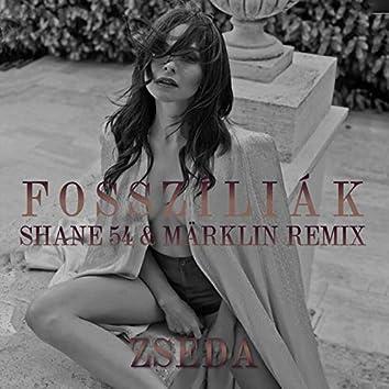 Fosszíliák (Shane 54 & Märklin Remix)