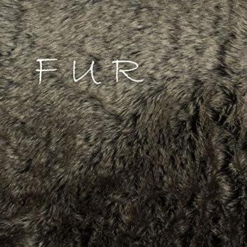 Fur (feat. Lil Havic)