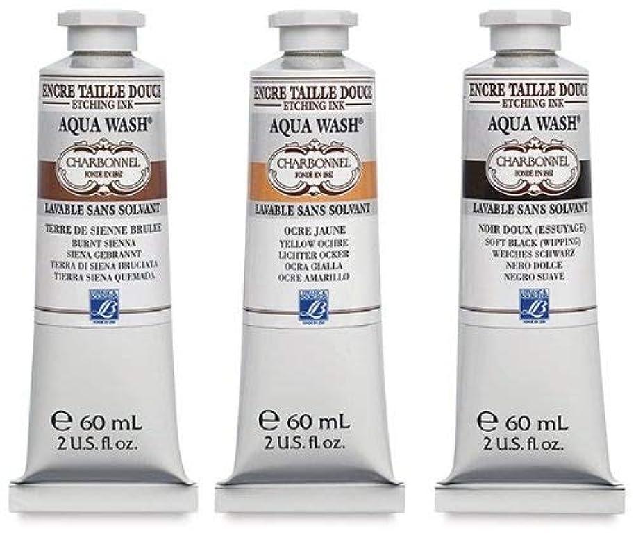 Charbonnel Aqua Wash Etching Ink - Black F66 60ml Tube