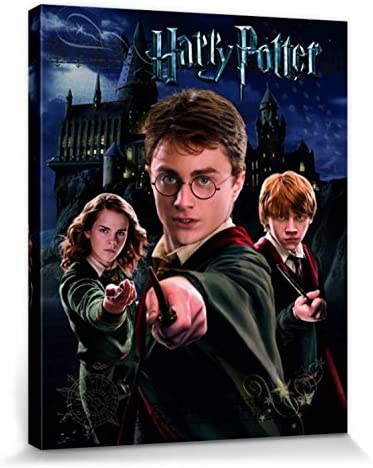 Harry Potter 1art1 Harry Ron Hermione Cuadro, Lienzo Montado sobre Bastidor (50 x 40cm)