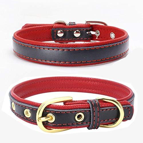 Longsing Collar de Perro Duradero Collares Básicos para