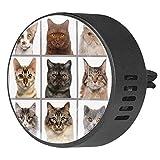 Diffuseur d'huiles essentielles en EVA pour voiture avec 9 têtes de chat