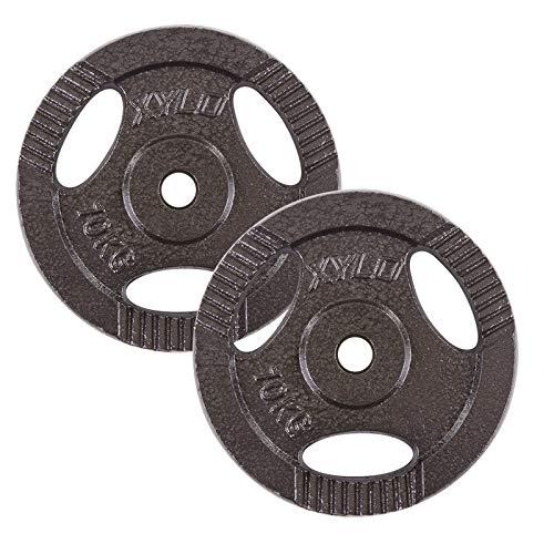 Xylo 20 kg Guss Hantelscheiben 2x10 kg 30/31mm Eisen Gewichte für Hantel Homegym Gewichtsscheiben Hanteltraining Hanteln Set Grau Krafttraining lackiert