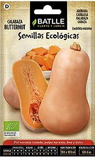 Semillas Ecológicas Hortícolas - Calabaza Butternut - ECO - Batlle