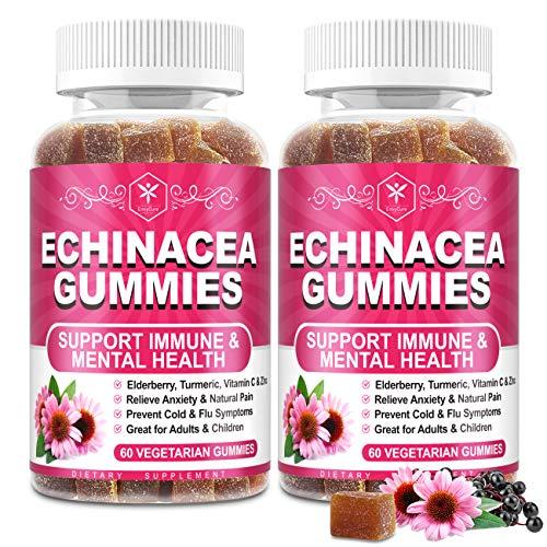 Organic Echinacea Gummies for Adult Kid with Black Elderberry, Vitamin C, Zinc & Turmeric Extract - Winter Immune Support - Vegan Immunity Booster Chewable Sambucus Gummy Antioxidant Herbal Supplement