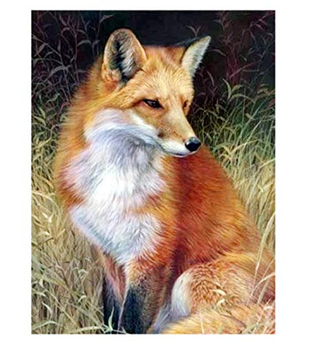 Diamond Painting 5D Animals Fox Pintura Diamante Completo Taladro Arte Diamantes Imitación Bordado Pegatinas de Pared decoración de la Sala 15x19inch(40x50cm)