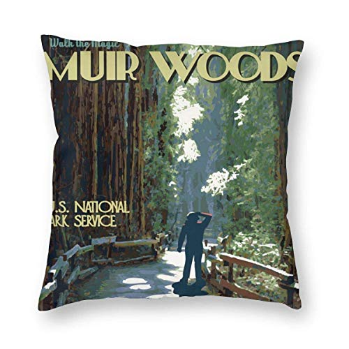 Sweet grape Funda de almohada cuadrada Muir Woods Vintage Travel California Cojines Fundas con cremallera sofá 1 paquete, 45,7 x 45,7 cm