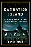 Image of Damnation Island: Poor, Sick, Mad, and Criminal in 19th-Century New York