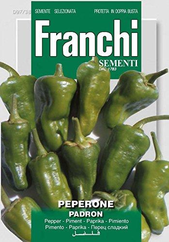 Franchi Sementi DBO97-38 Paprika Pimientos Padron (Paprikasamen)