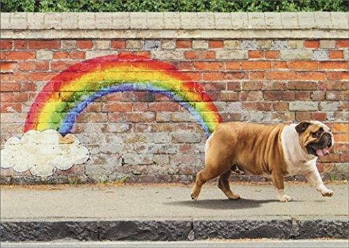 Avanti Dog Rainbow Funny Bulldog Birthday Card