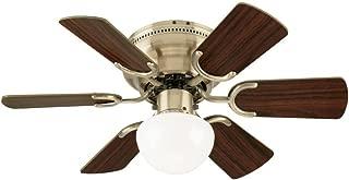 Best ceiling fan light size Reviews