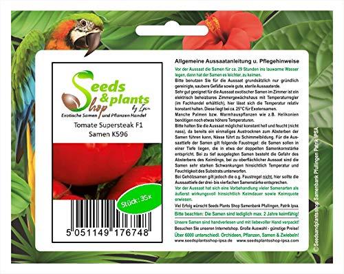 Stk - 35x Tomate Supersteak F1 - Alte Sorten Samen Gemüse K596 - Seeds Plants Shop Samenbank Pfullingen Patrik Ipsa