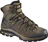 Salomon Men's Quest 4D 3 GTX Backpacking Boots, Wren/Bungee Cord/Green Sulphur, 10