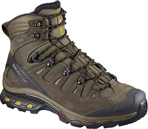 Salomon Men's Quest 4D 3 GTX Backpacking Boots, Wren/Bungee Cord/Green Sulphur, 7.5